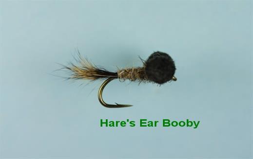 Hares Ear Booby
